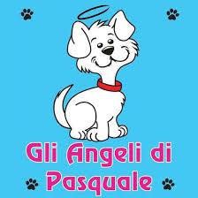 Gli Angeli di Pasquale